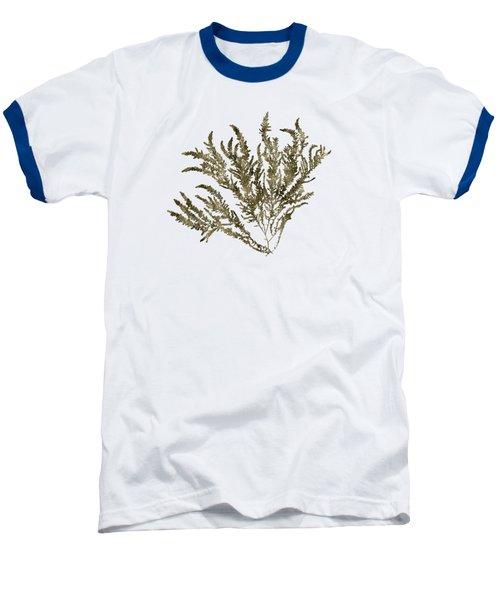Baseball T-Shirt featuring the mixed media Ocean Seaweed Plant Art Ptilota Sericea Square by Christina Rollo