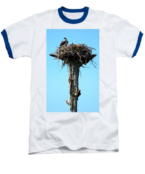 Osprey Point Baseball T-Shirt by Karen Wiles