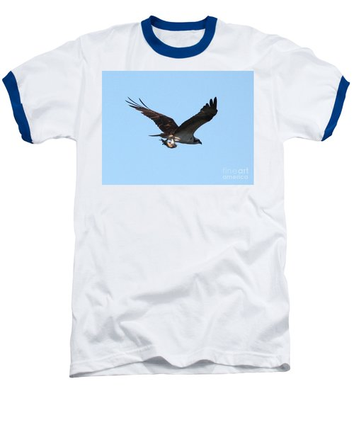 Osprey With Fish Baseball T-Shirt by Carol Groenen