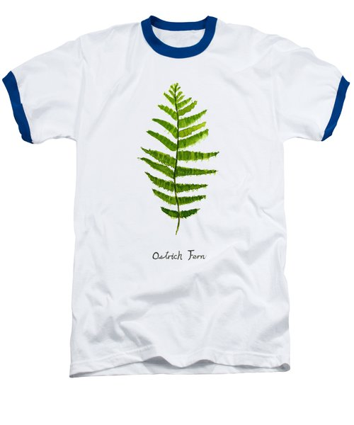 Ostrich Fern Baseball T-Shirt by Color Color