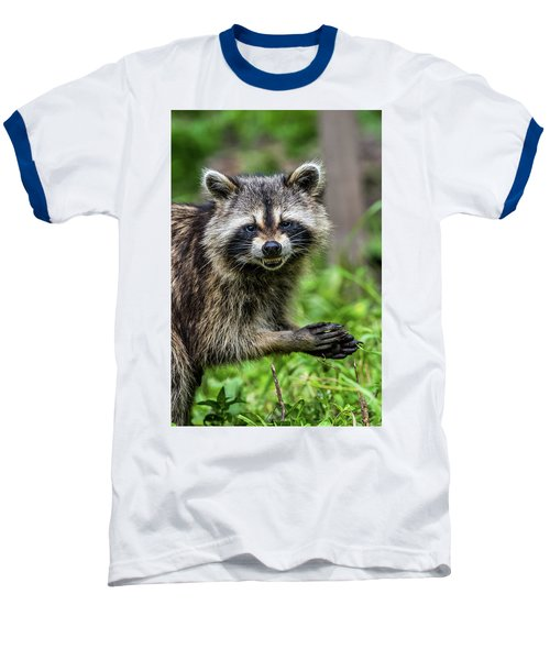 Smiling Raccoon Baseball T-Shirt by Paul Freidlund