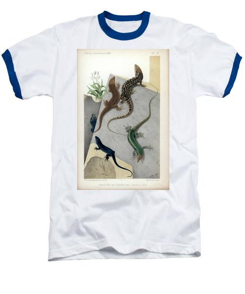 Baseball T-Shirt featuring the drawing Varieties Of Wall Lizard by Jacques von Bedriaga