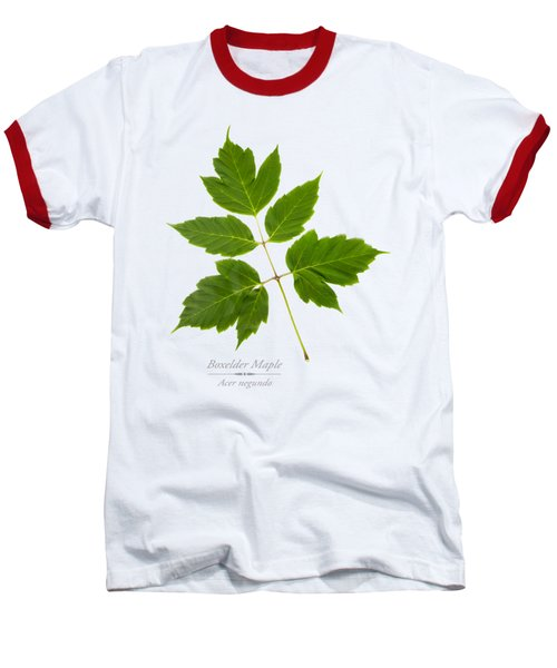 Baseball T-Shirt featuring the mixed media Box Elder Maple by Christina Rollo