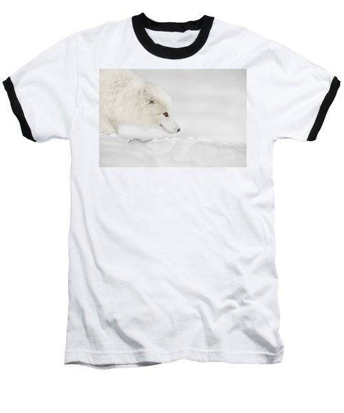 Arctic Fox Baseball T-Shirt