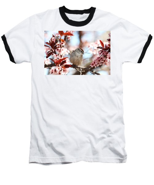 Baseball T-Shirt featuring the photograph Beautiful Sparrow by Trina  Ansel
