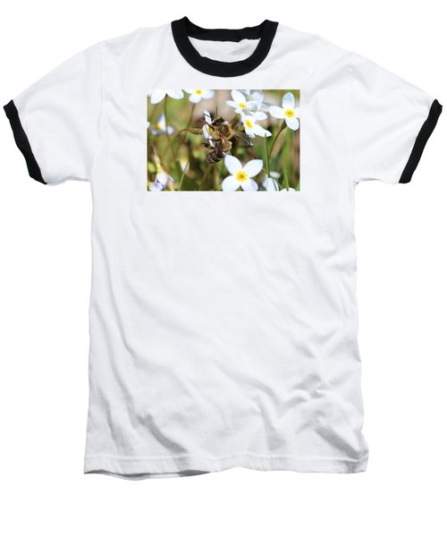 Honeybee On Bluet Baseball T-Shirt by Lucinda VanVleck