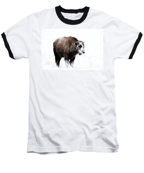 Lone Calf Baseball T-Shirt