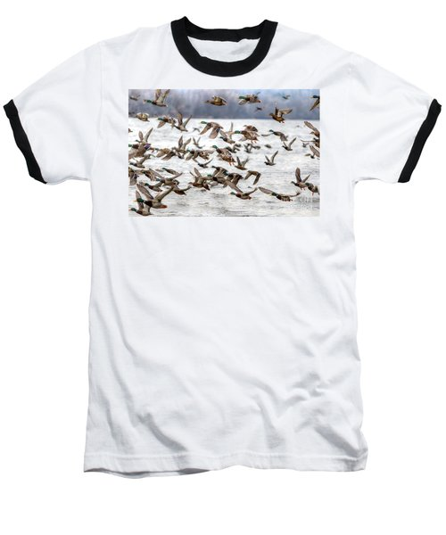 Baseball T-Shirt featuring the photograph One Direction by Robert Pearson