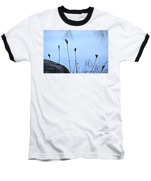 Pods On Pond Baseball T-Shirt