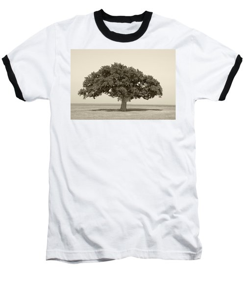 The Lonely Tree Baseball T-Shirt