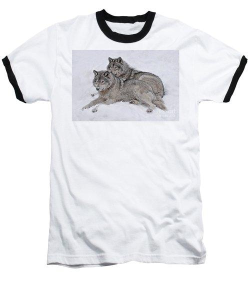 Timber Wolf Pair Baseball T-Shirt