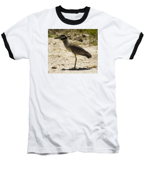 Yellow-crowned Night-heron Baseball T-Shirt