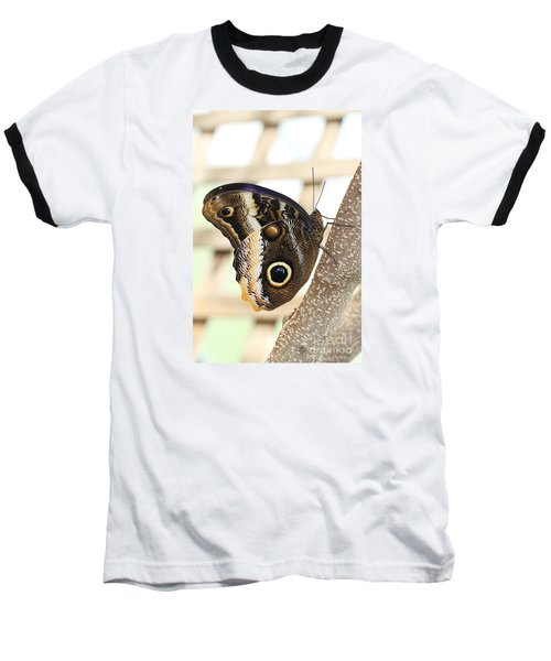 Yellow-edged Giant Owl Butterfly #4 Baseball T-Shirt by Judy Whitton