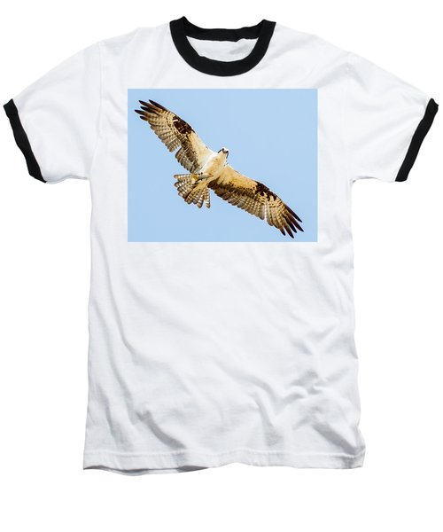 An Osprey Feeding On A Trout Baseball T-Shirt