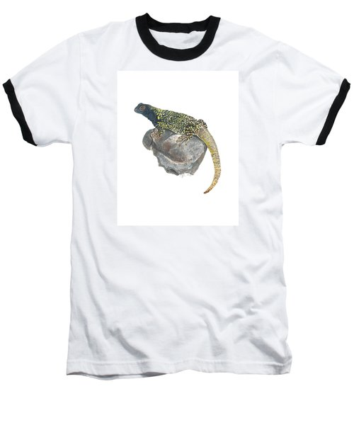 Argentine Lizard Baseball T-Shirt by Cindy Hitchcock