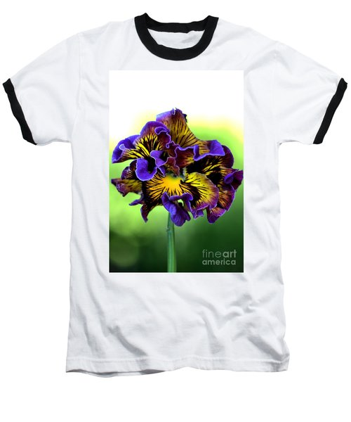 Frilly Pansy Baseball T-Shirt