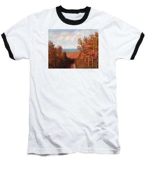 Mountain View Baseball T-Shirt by Jason Williamson