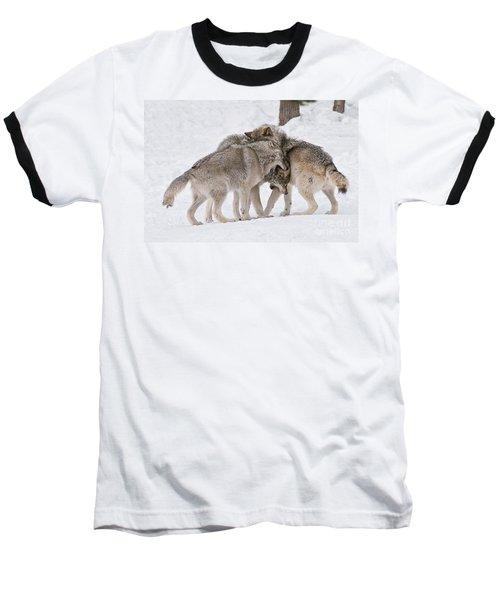 Timber Wolves Baseball T-Shirt