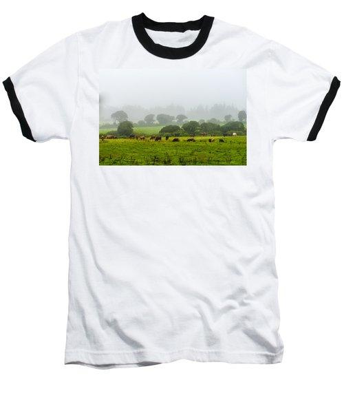 Cows At Rest Baseball T-Shirt