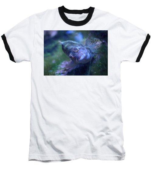 Baseball T-Shirt featuring the photograph Redspotted Hawkfish  by Savannah Gibbs