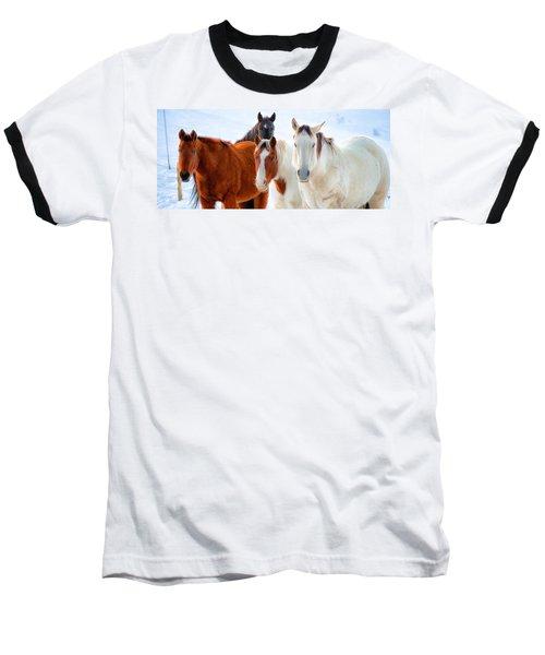 4 Horses Baseball T-Shirt by John McArthur