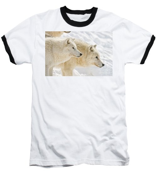 Arctic Wolves Baseball T-Shirt