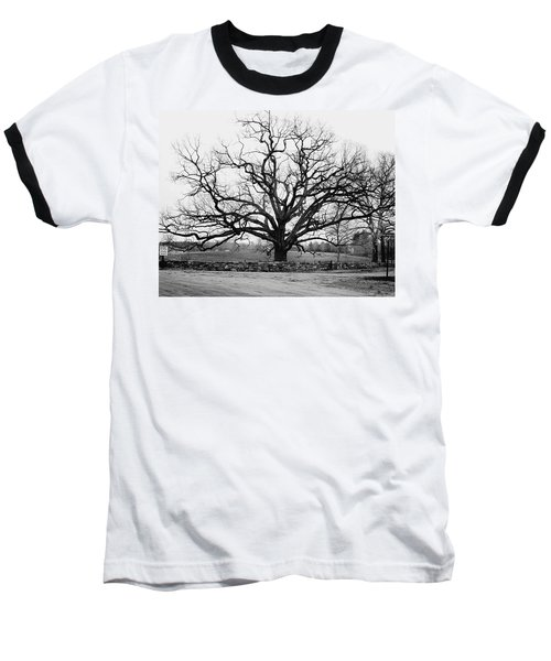 A Bare Oak Tree Baseball T-Shirt