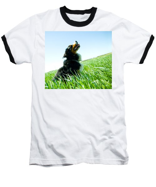 A Cute Dog On The Field Baseball T-Shirt