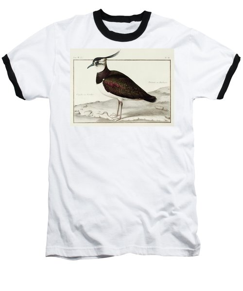 A Lapwing Baseball T-Shirt by Nicolas Robert