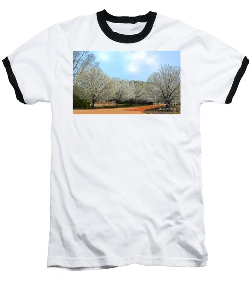 A Touch Of Spring Baseball T-Shirt by Kathy Baccari