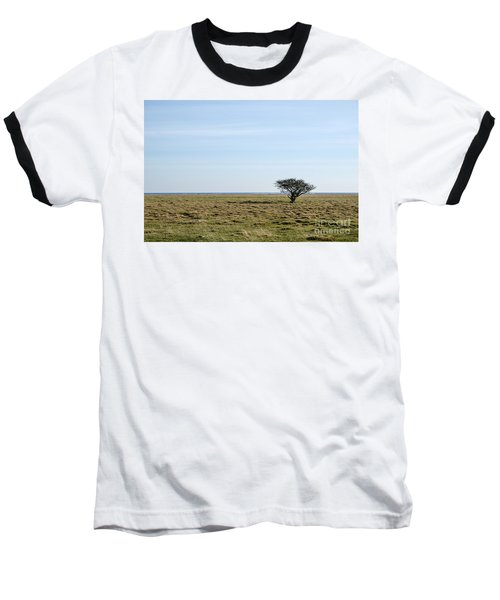 Alone Tree At A Coastal Grassland Baseball T-Shirt