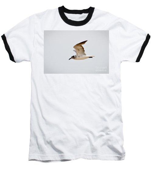 Alongside - Seagull Baseball T-Shirt