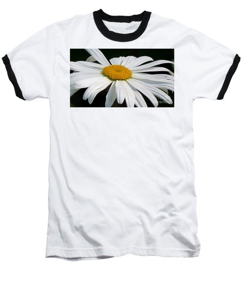Always Baseball T-Shirt by France Laliberte