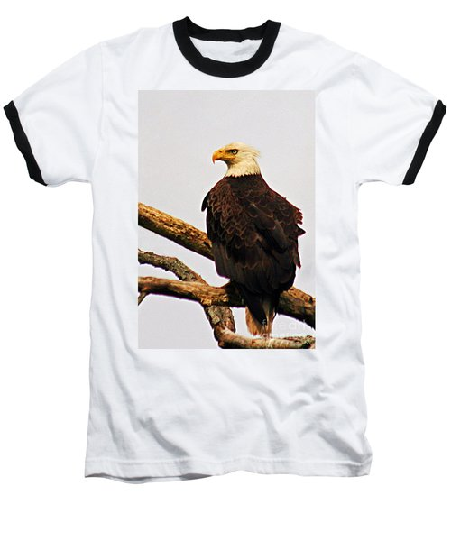 Baseball T-Shirt featuring the photograph An Eagle's Perch by Polly Peacock
