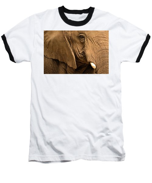 An Elephant's Eye Baseball T-Shirt