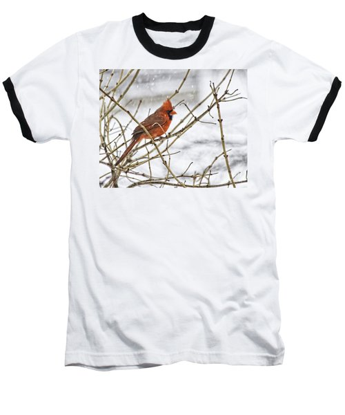 Another Snowy Day Baseball T-Shirt