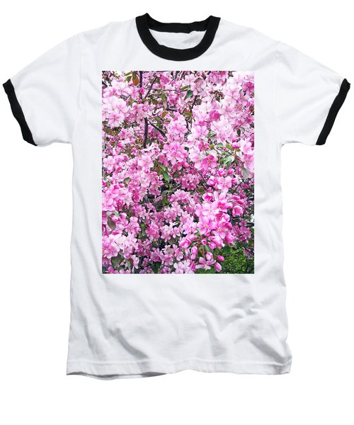 Apple Blossoms Baseball T-Shirt by Aimee L Maher Photography and Art Visit ALMGallerydotcom