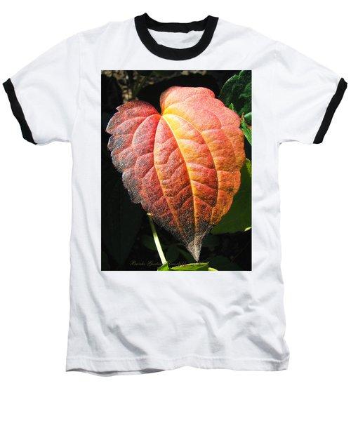 Baseball T-Shirt featuring the photograph Autumn Leaf Macro by Brooks Garten Hauschild