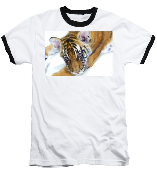 Baby Tiger Baseball T-Shirt by Steve McKinzie