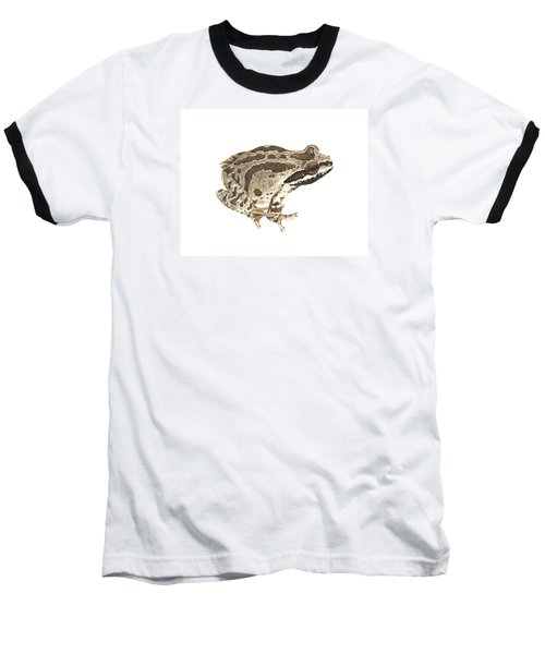 Baja California Treefrog Baseball T-Shirt by Cindy Hitchcock