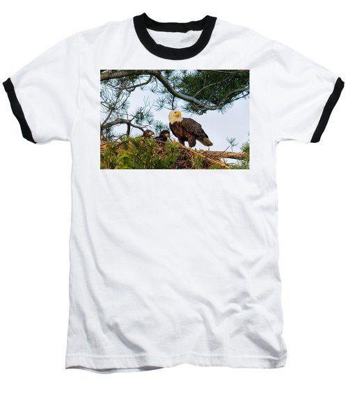 Bald Eagle With Eaglets  Baseball T-Shirt by Everet Regal