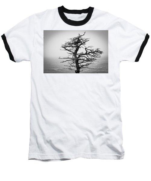 Bare Cypress Baseball T-Shirt by Melinda Ledsome