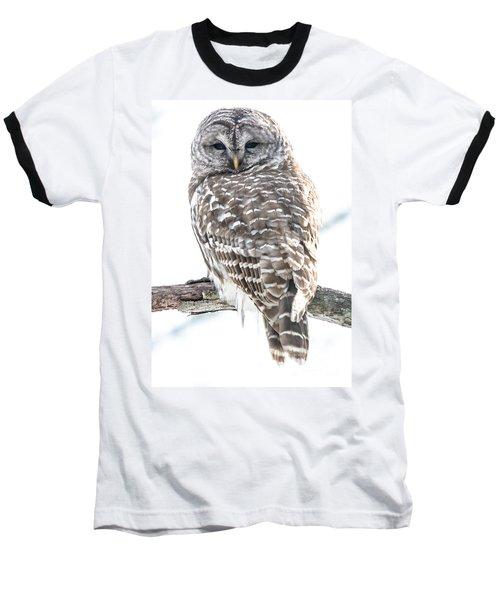 Barred Owl2 Baseball T-Shirt by Cheryl Baxter