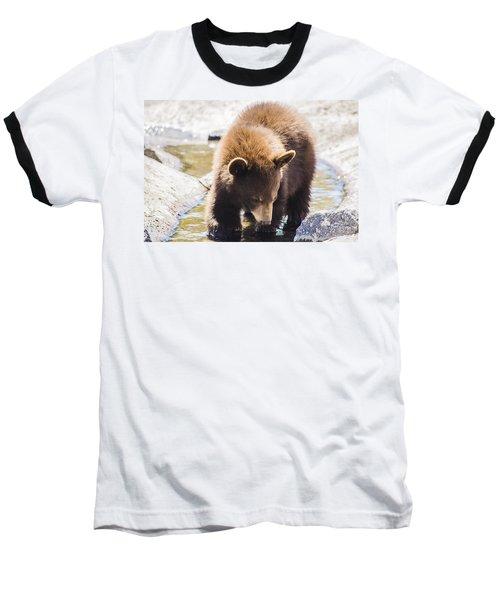 Bear Cub Baseball T-Shirt