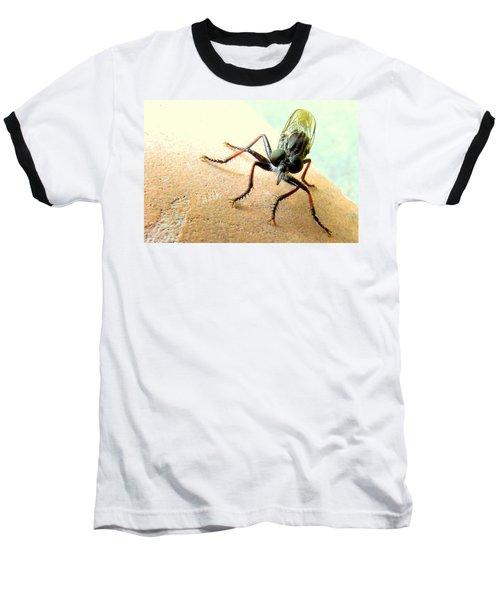 Bearded Robber Fly Baseball T-Shirt
