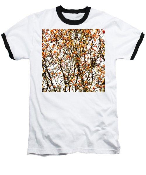Beautiful Rowan 10 - Square Baseball T-Shirt by Alexander Senin