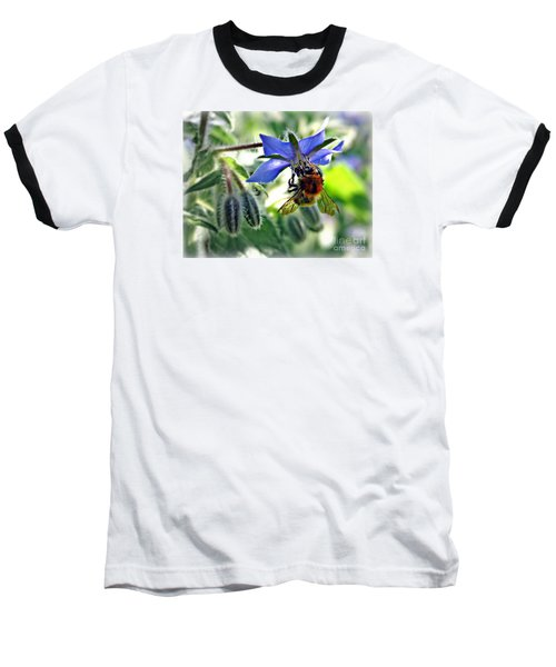 Bee On Borage Baseball T-Shirt