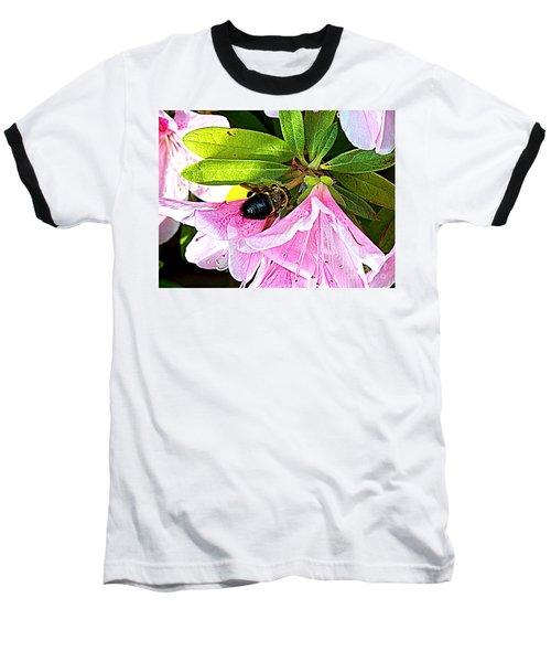 Bee On  Pink Azalea Baseball T-Shirt