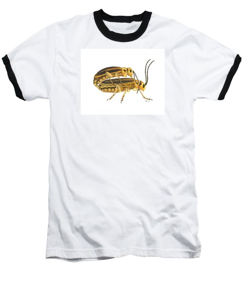 Chrysomelid Beetle Mating Pose Baseball T-Shirt by Cindy Hitchcock