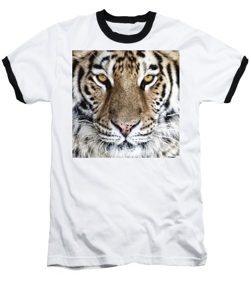 Bengal Tiger Eyes Baseball T-Shirt
